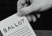 2014 Local Primary Elections